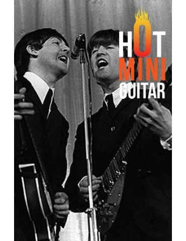 Miniature Guitar and Bass - John Lennon and Paul McCartney Package Collections 01
